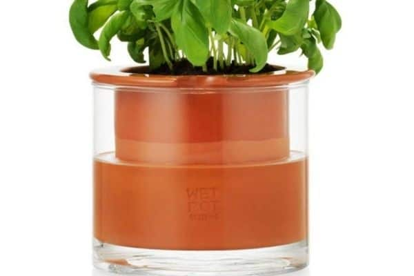 picture of self watering pot