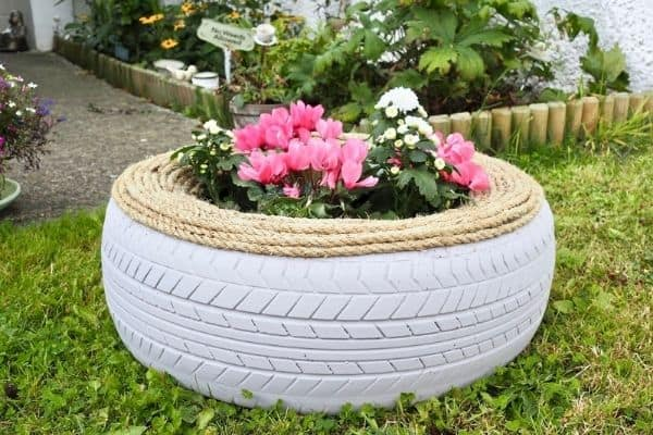 Picture of tire planter