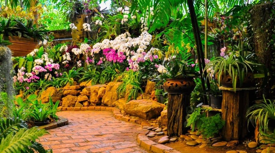 Picture of a beautiful garden with flowers