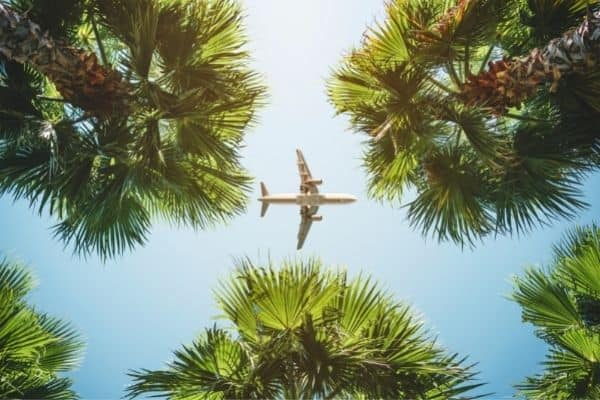 Picture of an airplane in a tropical setting