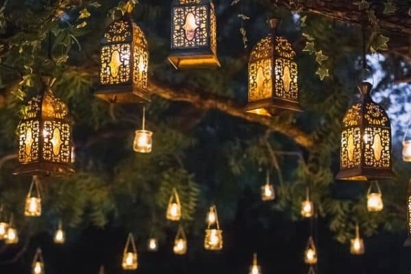 Picture of a garden with lights