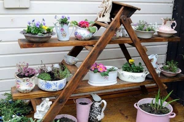 Picture of a garden ladder displaying plants in china pots