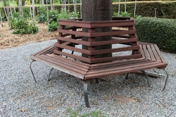 Picture of a garden with bench around a tree