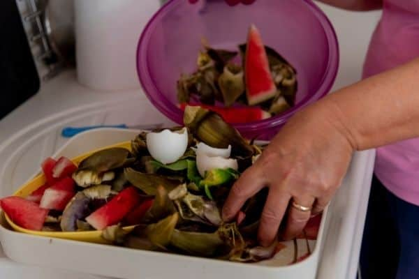 picture of hand putting food scrap into tray