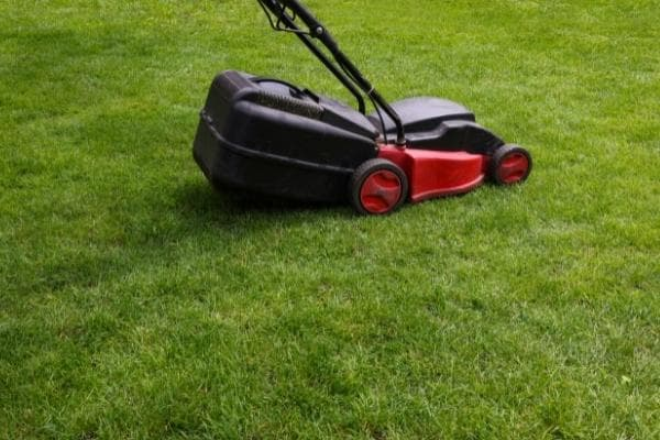 red electric mower in lawn