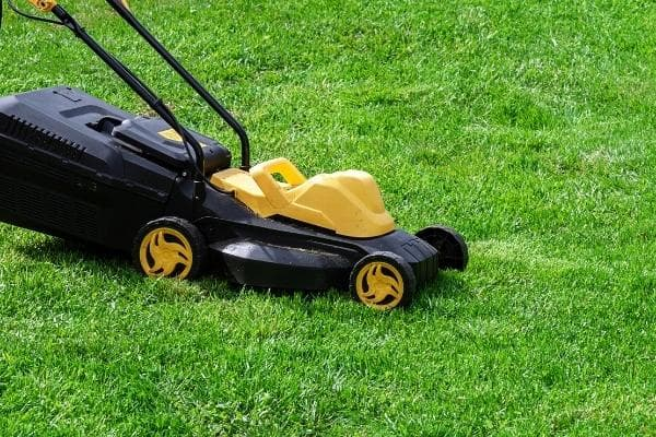 yellow electric mower in operation