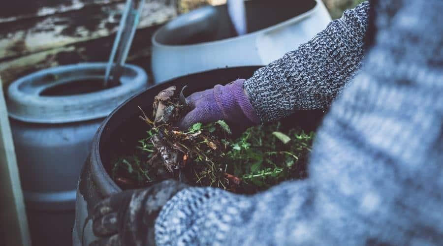 picture of gloved hands placing vegetation into plastic compost bin