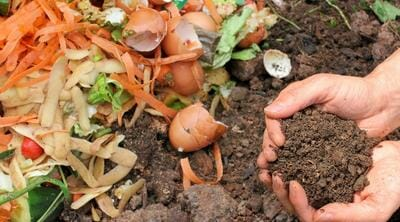 mixing old and new compost