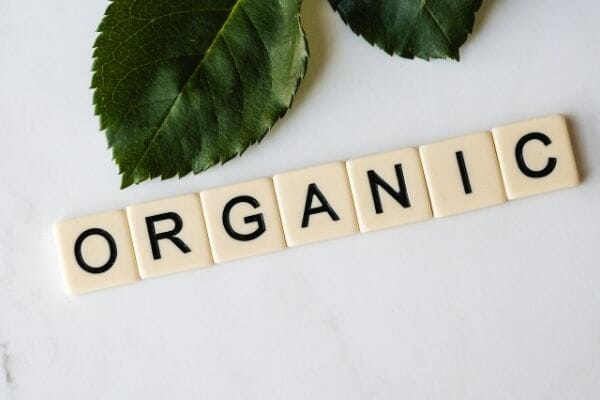 picture of scrabble letter of organic