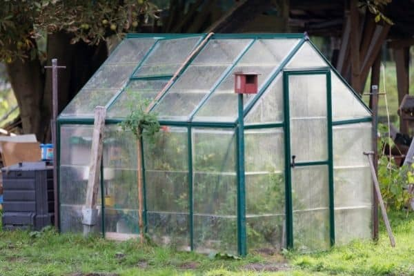 picture of small greenhouse
