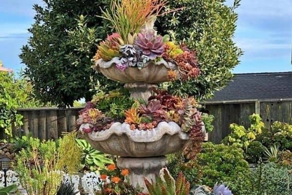 picture of growing fountain