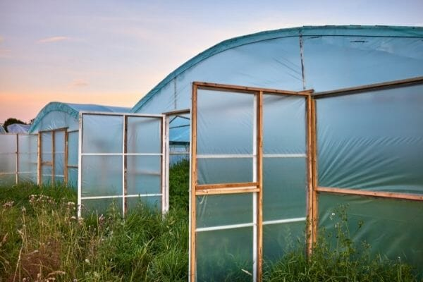picture of ventilation of greenhouse