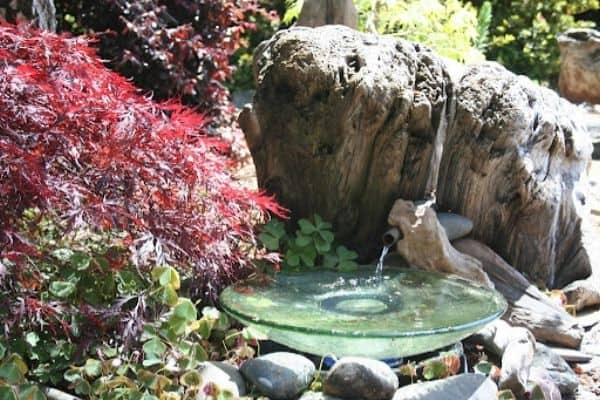 picture of Wildlife Fountain
