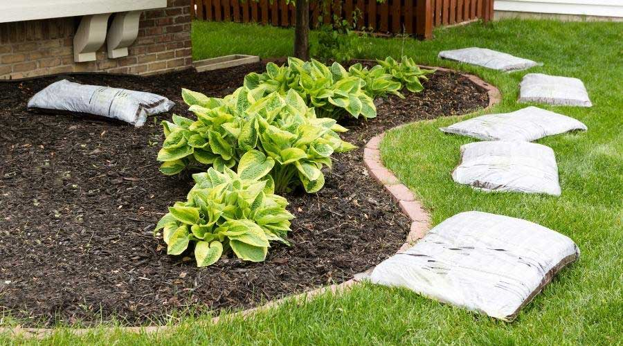 picture of woodchip-ground-cover-in-a-garden